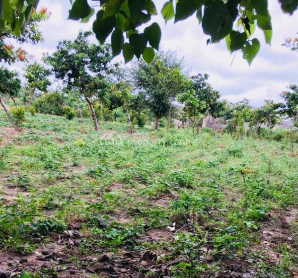 100% Dry Land with Right of Occupancy, Future Homes, Kuje Abuja Neighbourhood of Centenary City and International Airport, Kuje, Abuja, Residential Land for Sale