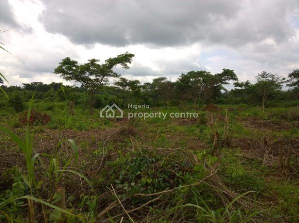 250 Acres of Land, Alobo Village Along Iseyin Ikere Road, Iseyin, Oyo, Land for Rent