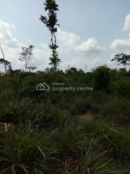 10 Acres of Agricultural Farmland, Iddo Town, Off Iddo Motor Park Garage, Keji Village, Ido, Oyo, Commercial Land for Sale
