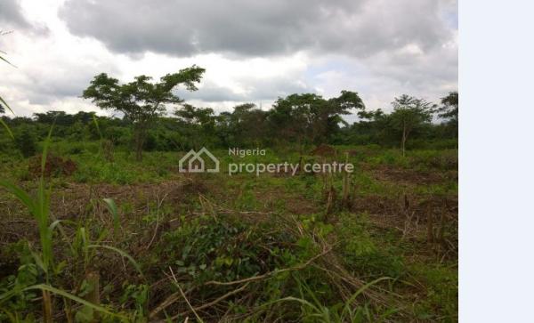 2 Acres of Land, Abata Village, Behind Ido Garage, Ido, Oyo, Mixed-use Land for Sale