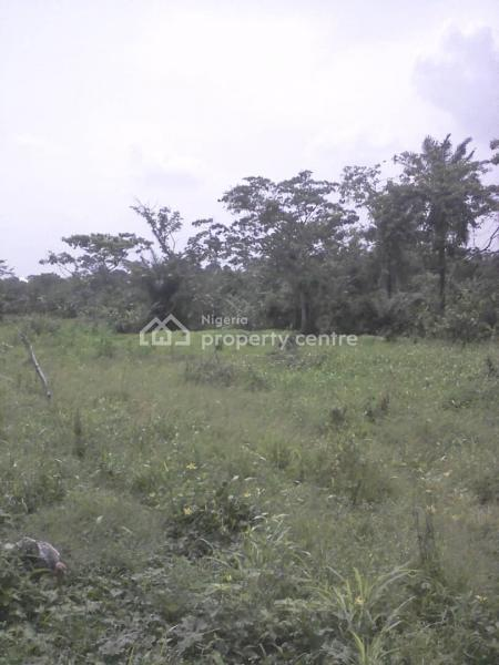 Nice Plot of Land in an Estate, Atenda Area, Federal Ministry of Labour Housing,omi Adio, Apata, Ibadan, Oyo, Residential Land for Sale