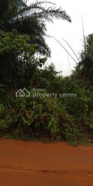 Plots of Land, Along Owode/omu-aje, Ire Village Road, Malaka, Obafemi Owode, Ogun, Mixed-use Land for Sale