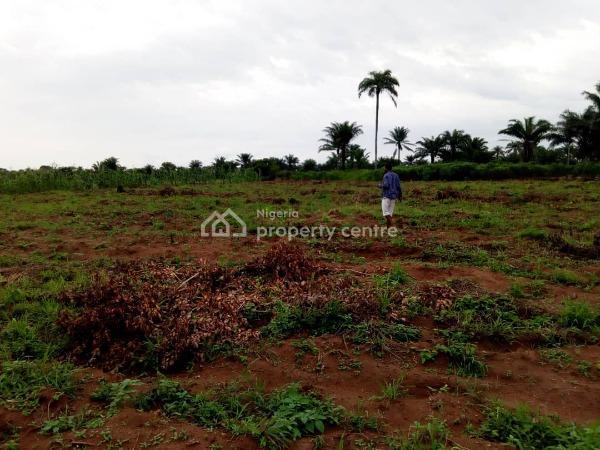 Plot of Land, Along Doleyin, Ado-odo Road, Doleyin Village, Atan Ota, Ado-odo/ota, Ogun, Mixed-use Land for Sale