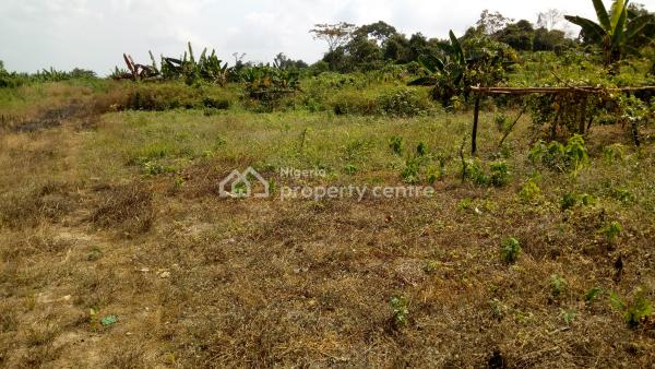 1,000 Square Metres of Dry and Well Located, Ikeja Gra, Ikeja, Lagos, Mixed-use Land for Sale