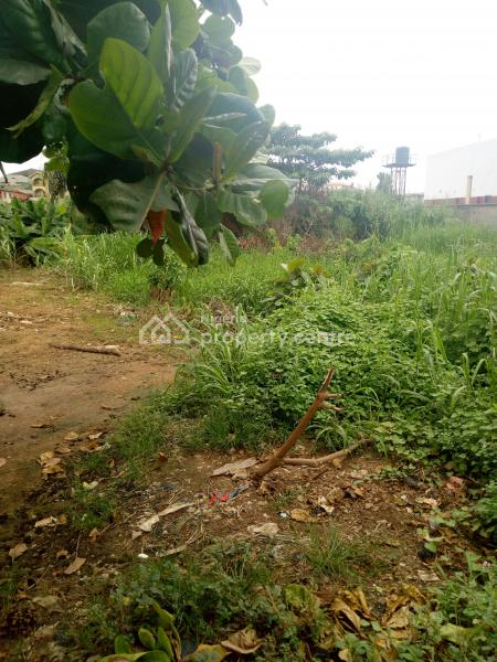 Standard Full Plot of Land 60 By 120 with 5 Shops, Ipaja, Lagos, Residential Land for Sale