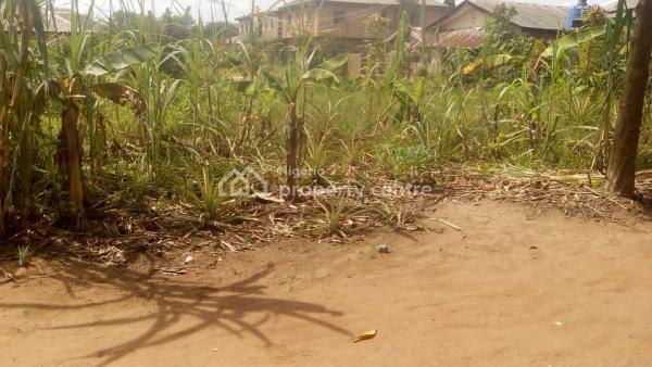 Standard Residential Land, Akesan, Igando, Ikotun, Lagos, Residential Land for Sale