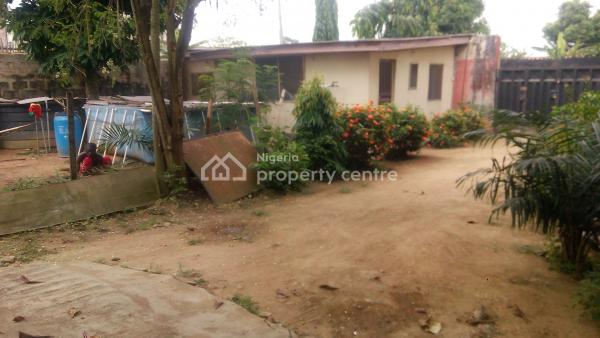 Seven (7) Bedroom Detached Duplex with Mini Flat Bq, Akinrinmade Close, Meiran, Agege, Lagos, Detached Duplex for Sale
