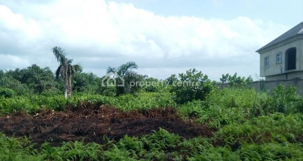 Distress Sale of a Plot of Land with a Foundation of a Storey Building, Off Anjorin Street, Iba New Site, Iba, Ojo, Lagos, Residential Land for Sale