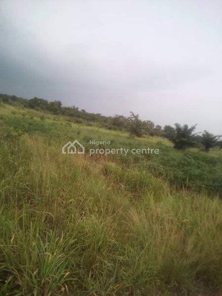 Survey Plan and C of O, Oja Odan Yewa North, Yewa North, Ogun, Commercial Land for Sale