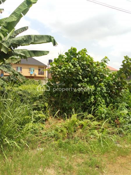 Full Plot of Land, Opposite Opic Estate, Ojodu, Lagos, Mixed-use Land for Sale
