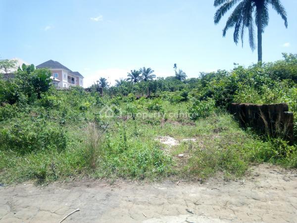 Undeveloped Land, Umuobia Housing Estate, Umuahia, Abia, Mixed-use Land for Sale
