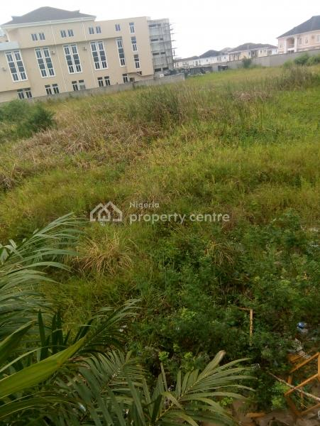3200 Square Metres, Opposite Ikota Shopping Complex, Lekki Expressway, Lekki, Lagos, Commercial Land for Sale