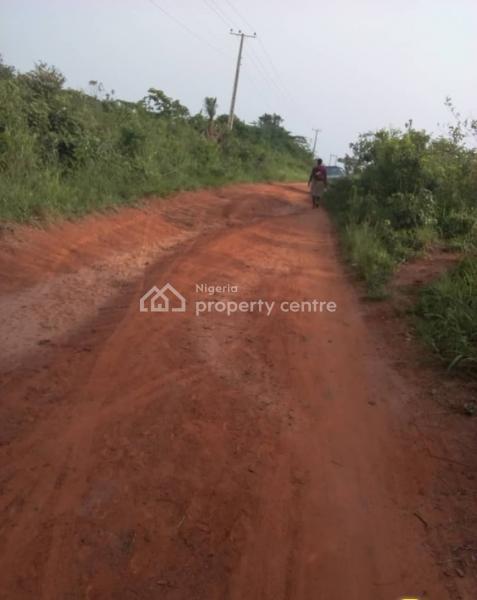 3000 Hectares, Sela Orile, Obafemi Owode, Ogun, Commercial Land for Sale