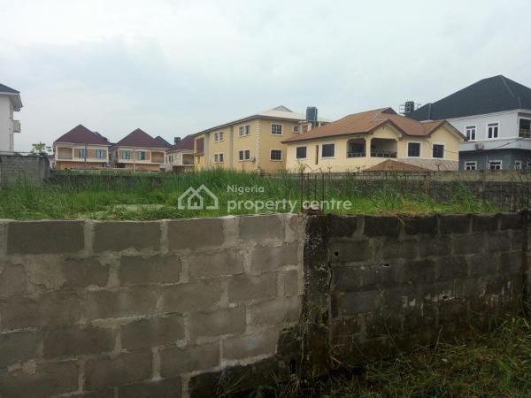 1300 Sqm (2 Plots) Land, Chevy View Estate, Lekki, Lagos, Residential Land for Sale