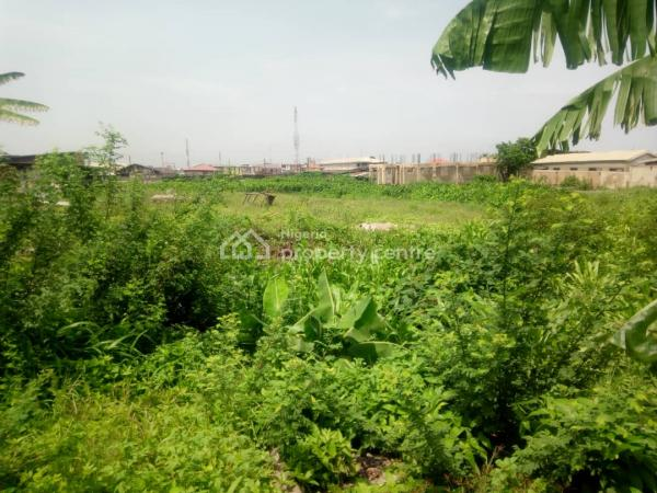 About 10 Plots of Land, Shomolu, Lagos, Mixed-use Land for Sale