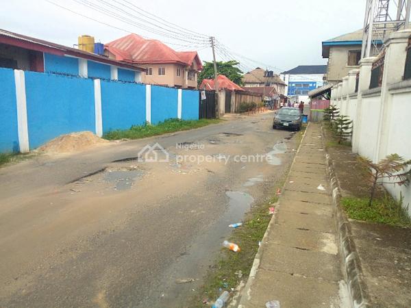 Super Elegant 2 Bedroom Flat in Ada George for Rent, Ada George, Port Harcourt, Rivers, Flat for Rent
