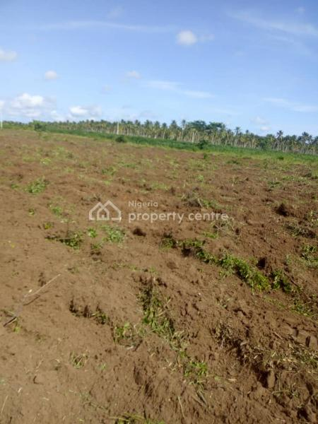 Land, Fate Road, Ilorin West, Kwara, Commercial Land for Sale
