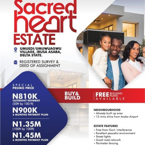 Sacred Heart Estate, Asaba, Delta, Mixed-use Land for Sale