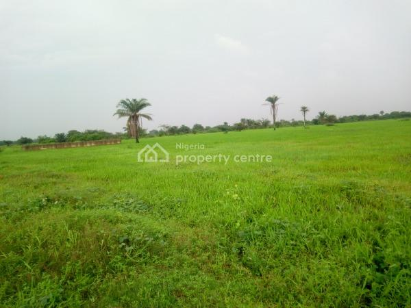 Accessible Residential Lands with C of O in Lagos, Gra, Isheri North, Lagos, Residential Land for Sale