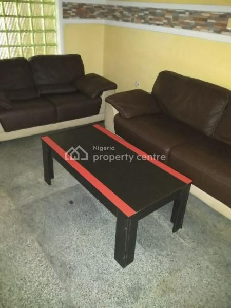 Lavishly Serviced and Furnished Apartments, Asokoro District, Abuja, Flat for Rent