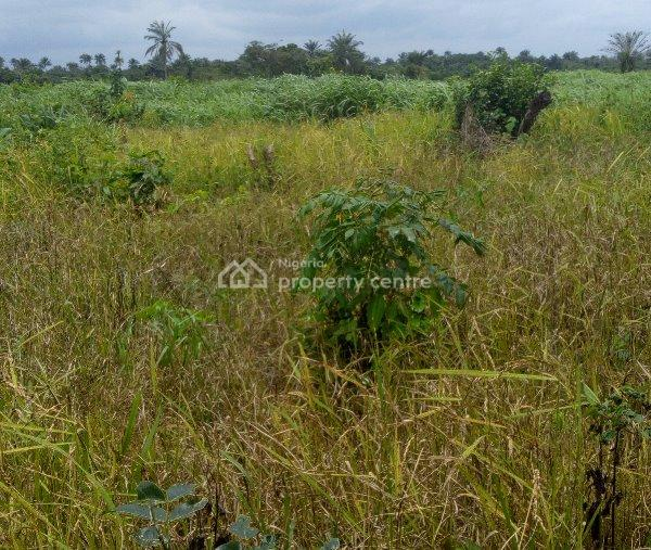 Good/cheap Farm/industrial/commercial Land at a Strategic Location for Sale, Opposite Daywatermann College, Obafemi Owode, Ogun, Land for Sale