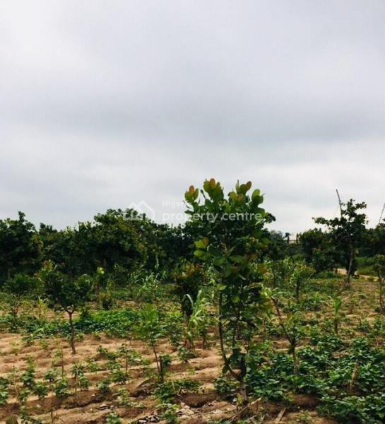 Promo Land, Enu Ani Mega City, Asaba, Delta, Residential Land for Sale