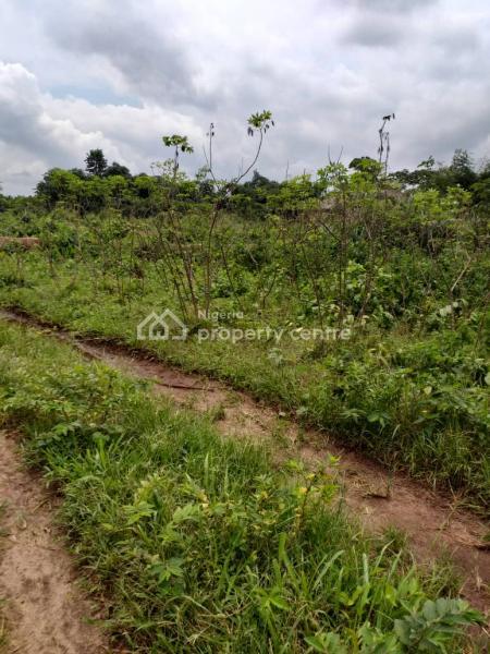 Plain Level Plot of Land of 50x100, Palace Road, Uteh, Off Upper Mission Extension, Benin, Oredo, Edo, Residential Land for Sale