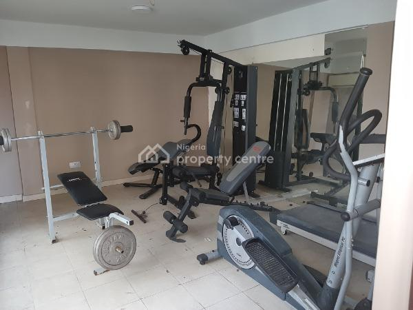 Fascinating and Luxuriously Finished Three (3) Bedroom Terrace Duplex with Boys Quarter and Swimming Pool, Lekki Phase 1, Lekki, Lagos, Terraced Duplex for Sale