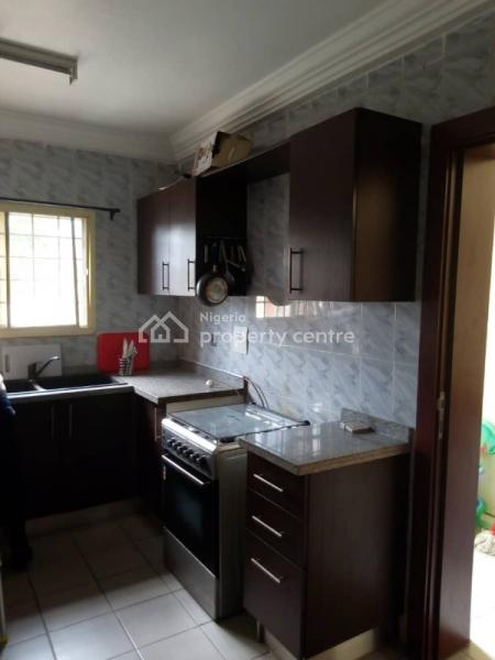 Furnished and Serviced 2 Bedroom Flat, Asokoro District, Abuja, Flat for Rent