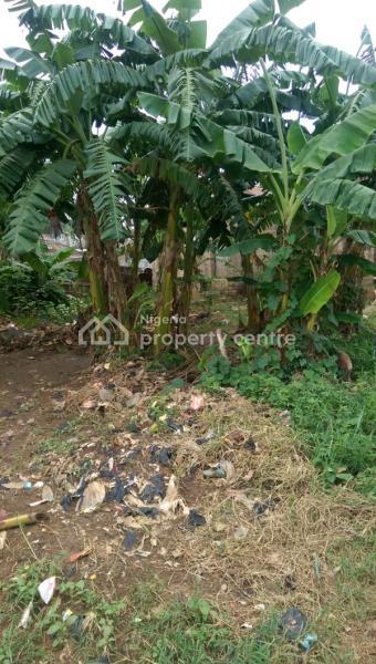 Prime Land, Oshimili South, Delta, Mixed-use Land for Sale
