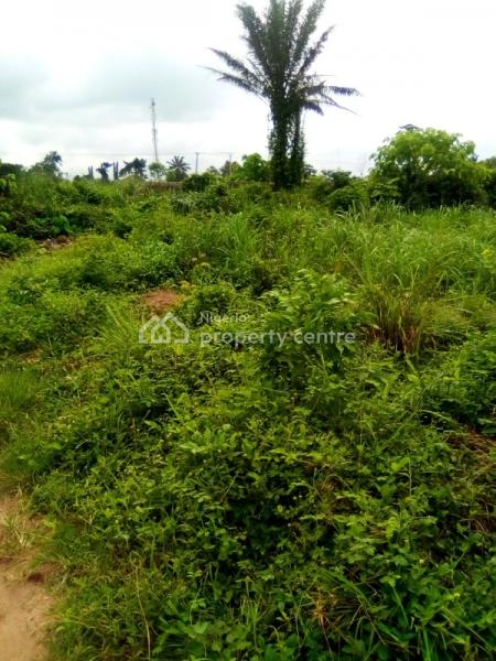 100% Dry Land, Behind Jesus Saves, Lion House Road (behind Lion House), Asaba, Delta, Mixed-use Land for Sale