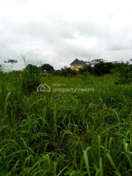 100% Dry Land, Behind Jesus Saves, Lion House Road, Nnebisi Road, Asaba, Delta, Mixed-use Land for Sale