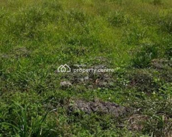Land, Constitution Avenue, Central Business District, Abuja, Commercial Land for Sale
