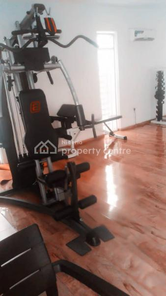 Executive Serviced 4 Bedroom Terraced Duplex with a Room Bq,  Fully Air-conditioned, Gym,  Swimming Pool, Maitama District, Abuja, Terraced Duplex for Rent