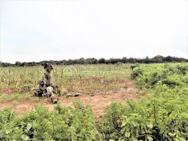 1400 Sqm Residential Land for Low Density, Guzape District, Abuja, Land for Sale