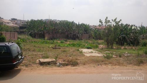 Vacant Land 1,130 Square Metre, Ibadan, Oyo - Sanusi Kabeer