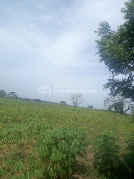 Genuine Farmland Plots of Land, Afon Town, Asa Lga, Ilorin East, Kwara, Mixed-use Land for Sale
