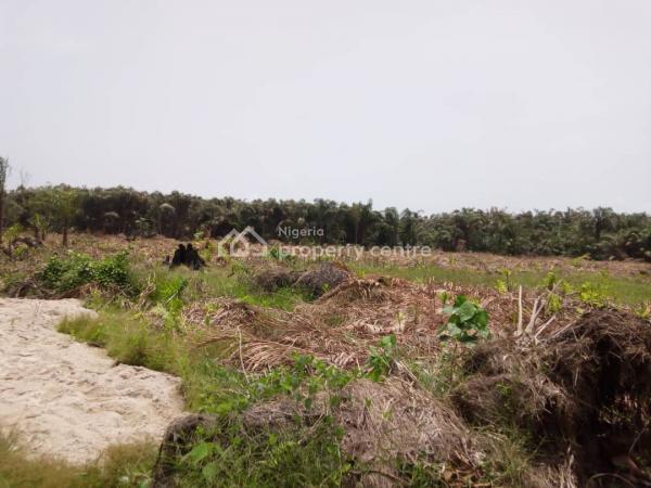 Genuine and Affordable Land, Green Spring School, Awoyaya, Ibeju Lekki, Lagos, Mixed-use Land for Sale