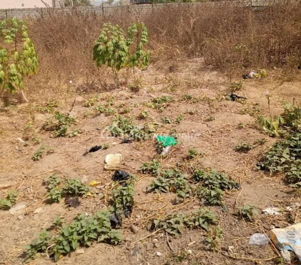 1200 Sqm Land, Close to Aduvia Int. Sch., Jahi, Abuja, Residential Land for Sale