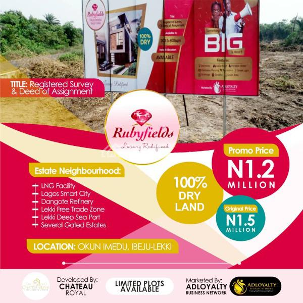 Multi-national Hectares of  Land for Investment Available in an Estate, Few Minutes From La Campaign Tropicana Beach, Rubyfields Estate, Okun Imedu, Ibeju Lekki, Lagos, Mixed-use Land for Sale