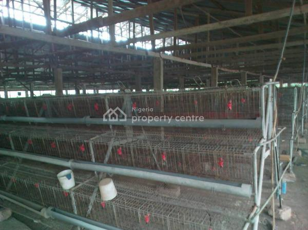 Animal Farm, Along Avu, Off Owerri/port Harcourt Road, Works Layout, Owerri, Imo, Commercial Property for Sale