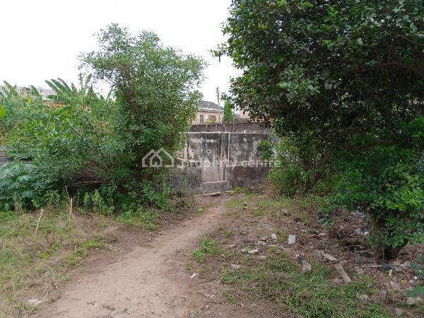 60 X  100  Plot of Land, Off Isiba Oluwo, Egbeda, Alimosho, Lagos, Land for Sale