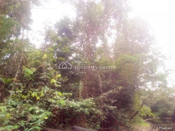 Over 100 Hectares of Farmland in a Very Peaceful Community, Iwuru Town, Biase, Cross River, Mixed-use Land for Sale