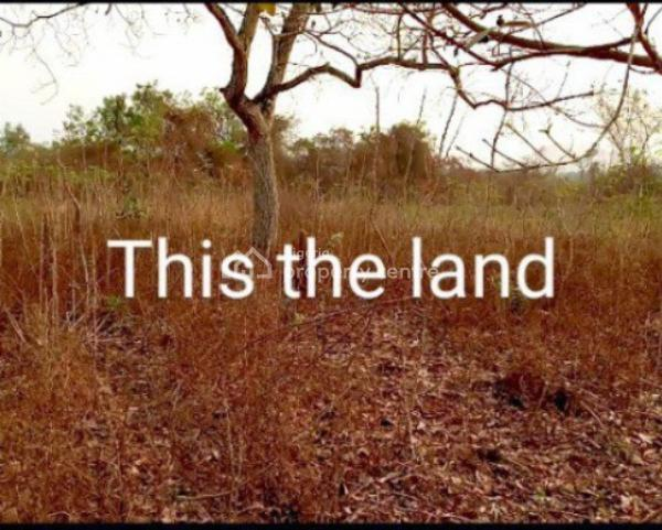 a Plot of Land, Isokan, Osun, Land for Sale