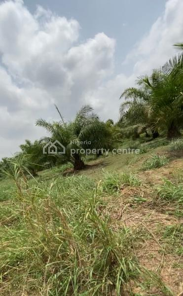 Farmlands for Agriculture, Odeda, Ogun, Mixed-use Land for Sale