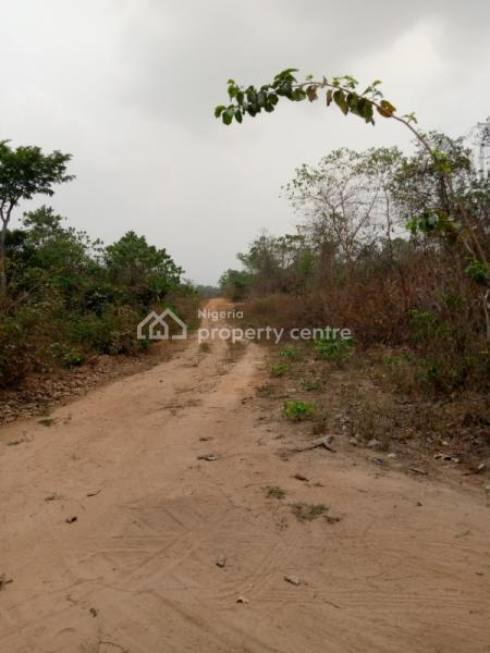 Limited Land/plots, After Winners Estate, Trans Ekulu, Enugu, Enugu, Mixed-use Land for Sale