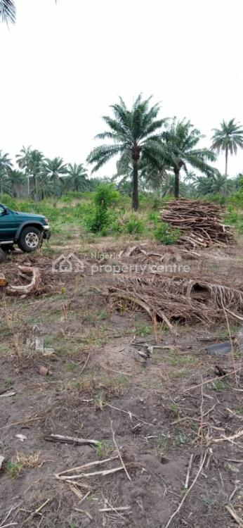 Genuine 1000 Acres of Land, Iseyin Town, Iseyin, Oyo, Commercial Land for Sale