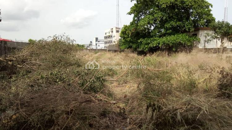 Covid-19 Discount: 1600sqm Plot of Land, Ikate, Ikate Elegushi, Lekki, Lagos, Residential Land for Sale