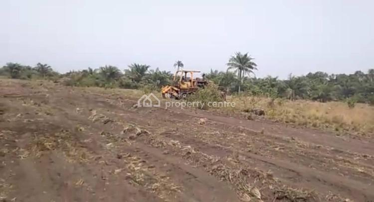Affordable Land Now on Promo, Ise/igbogun, Ibeju Lekki After La Campaigne Tropicana., Ibeju Lekki, Lagos, Mixed-use Land for Sale