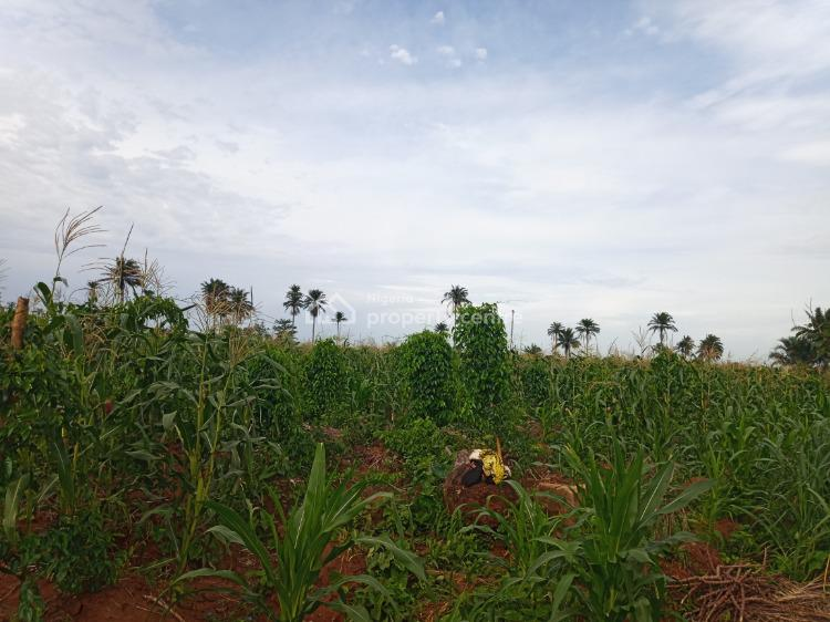 Farm Land, Kobape Township, Obafemi Owode, Ogun, Mixed-use Land for Sale